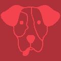 szkolenie psów warszawa cena
