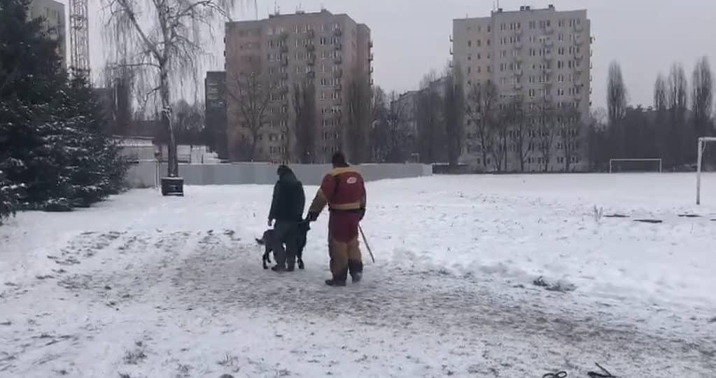 obrona przewodnika